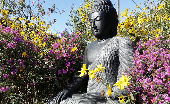Le nouveau Bouddha du jardin de Pondaurat, le lieu des stages